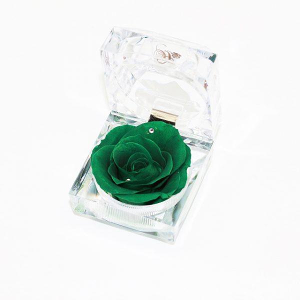 Rose in Ring Box Preserved Flower