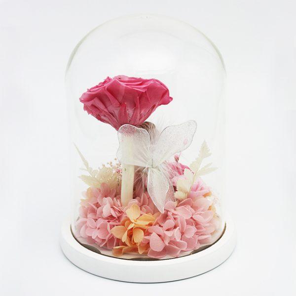 Fairyland Preserved Flower