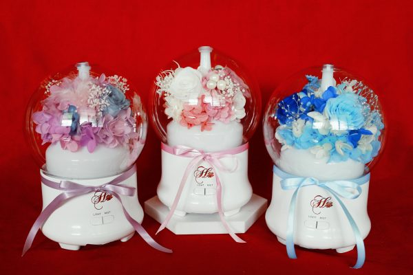 Rose Humidifier Preserved Flower