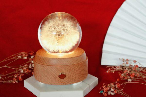 Dandelion Speaker Preserved Flower